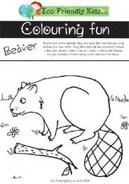 Benny the Beaver Colouring