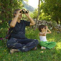Bird Watching: How to Get Started