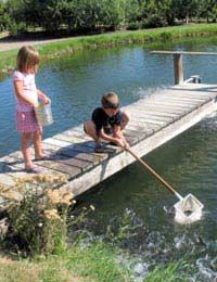 Safe Pond Dipping