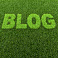 Starting Your Own Eco Blog