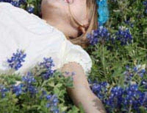 Planting Your Own Mini Wildflower Meadow